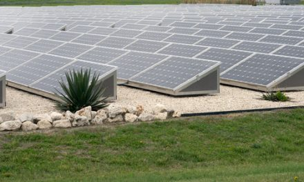 Cost of solar keeps falling: ARENA