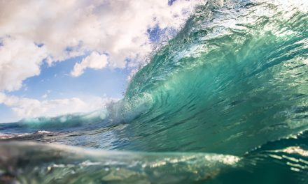 Australia's wave energy inventors look for a break