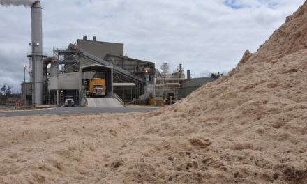 Sugar mill plans on boost from $75m power plant