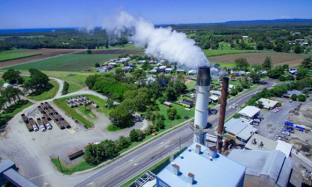 Biomass fires a Cape Byron Power turnaround