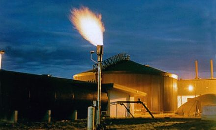 Biogas experts gather in Australia to share global best practice