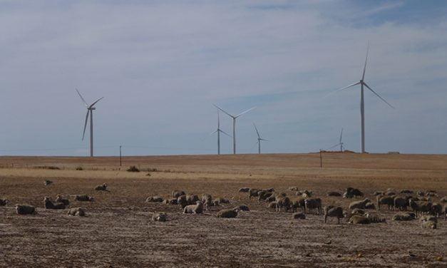 Far-west NSW to host 200MW Silverton Wind Farm
