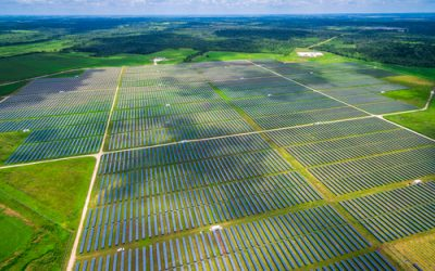 CEFC backs three NSW solar plants with $150m investment