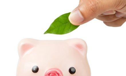 Australian Clean Energy Seed Fund reaches $26m capital target