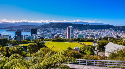 Redback wins Wellington virtual power plant trial