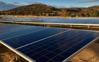 Williamsdale solar farm tilts to action