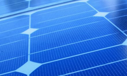 JinkoSolar P-type multi-crystalline cell sets 22.04% efficiency record