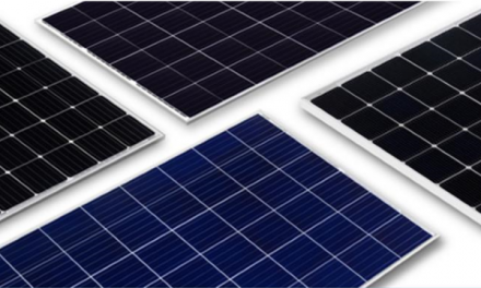 JinkoSolar ranked most bankable by BNEF