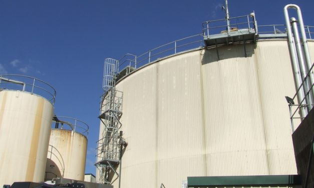 EarthPower, the biogas plant that bubbled back from the brink