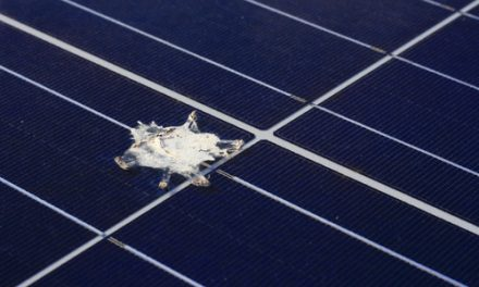 Respect the power … why it pays to look after your solar system
