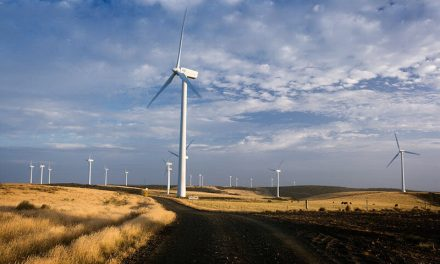 Wind farms receiving weather guidance in Tassie
