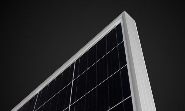 Jinko Swan bifacial module scoops Intersolar award