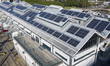 Solar 'revolution' has gone mainstream: APVI