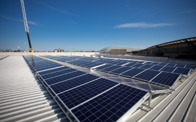 Solar reaches 20GW as rooftop PV grows 40% despite pandemic hit to economy