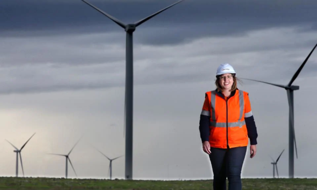 Head in the air, feet on the ground: the highwire skills of a clean energy community relations coordinator