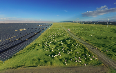 China's hydro giant tests the limits of PV integration