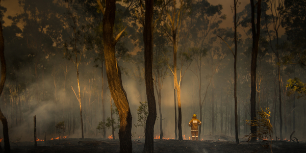 Demand-side supports the grid during bushfire emergency