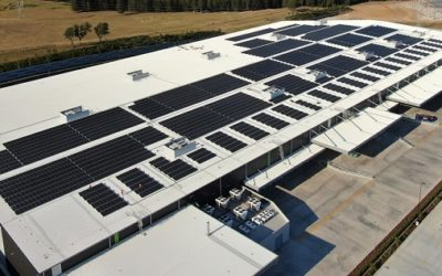 AGL buys C&I solar leaders Solgen and Epho