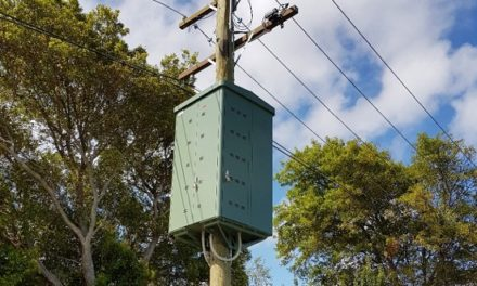 Kilowatt koalas … the batteries-up-poles project that sends a powerful message about residential storage