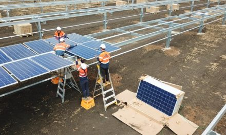 Monford Group delivers 132MW Merredin Solar Farm, WA's largest