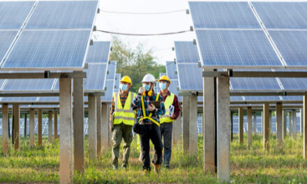 Renewables a shining light in a challenging year