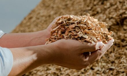 The 750kWh energy solution you wooden expect