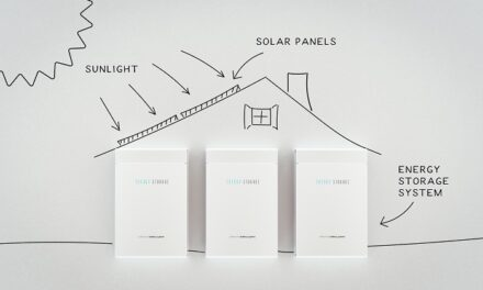 Deciding our distributed energy future