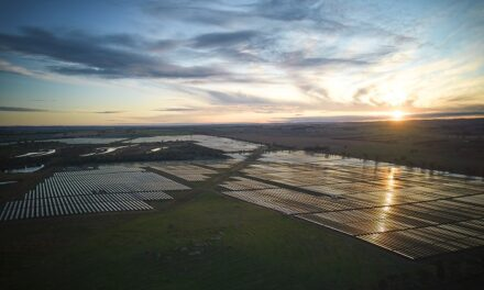 How fossil entrants to Australia can align their clean ambitions with renewables reality